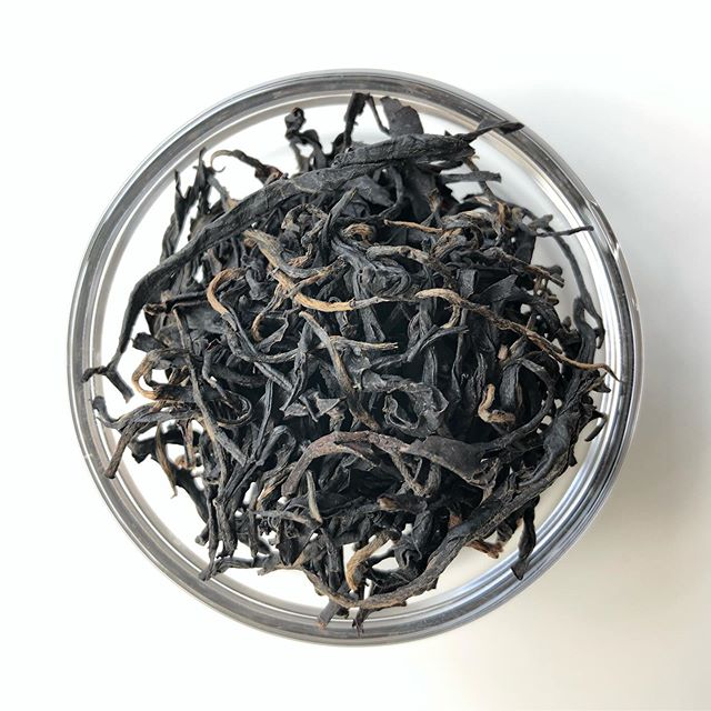 Purple Sheng Puerh from Yunnan 〰️ First purple tea shared in five years of tea club ✨ Members, hope you're enjoying this one!