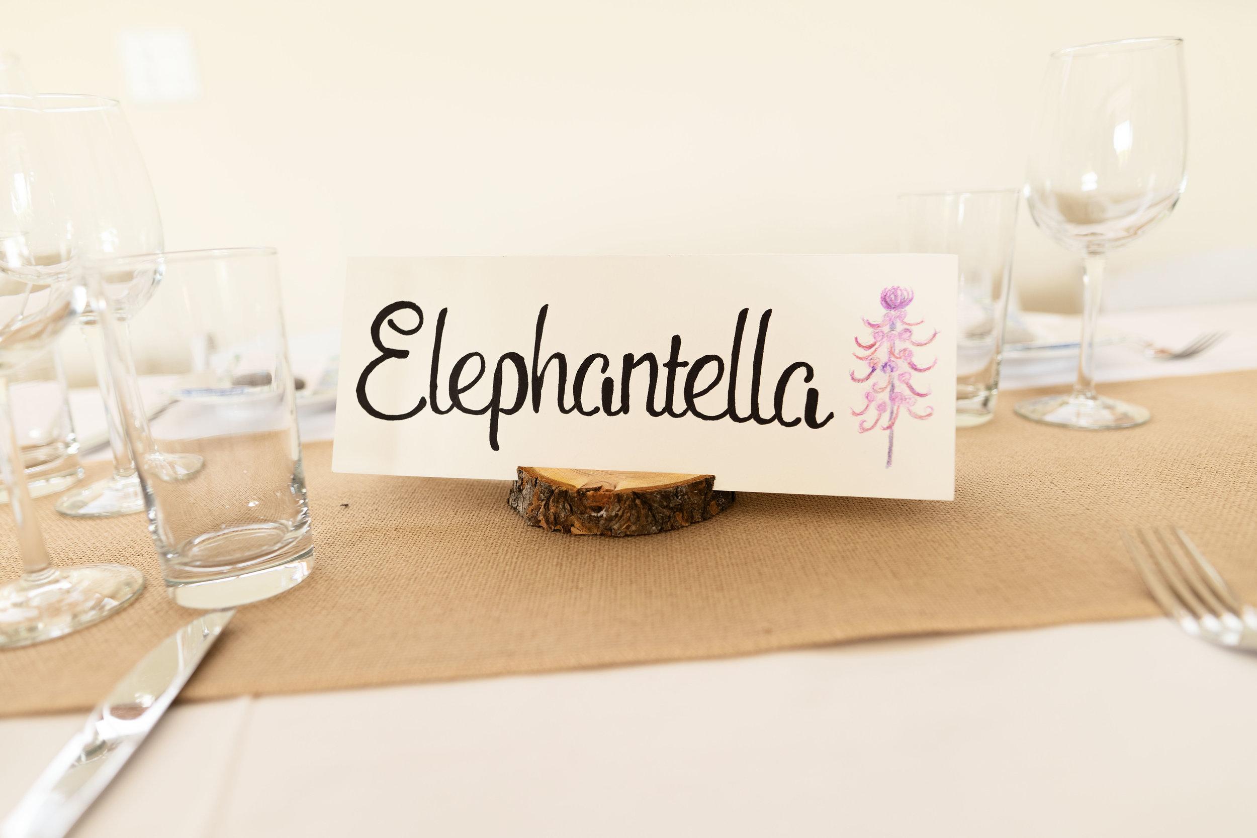 elephantella.jpg