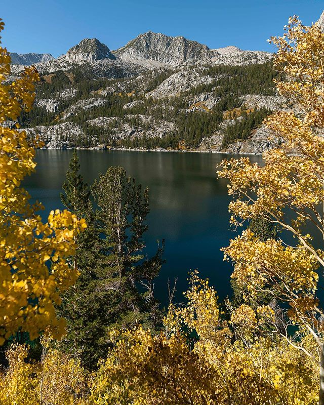 some nice fall colors up at South Lake, right near the Buttermilks!! #fallcolors #autumn #leafpeeping #bishop
