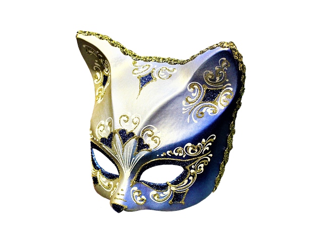 Image Credit (c) Zorro4 on pixabay  https://pixabay.com/en/mask-cat-carnival-venice-artifact-3252088/