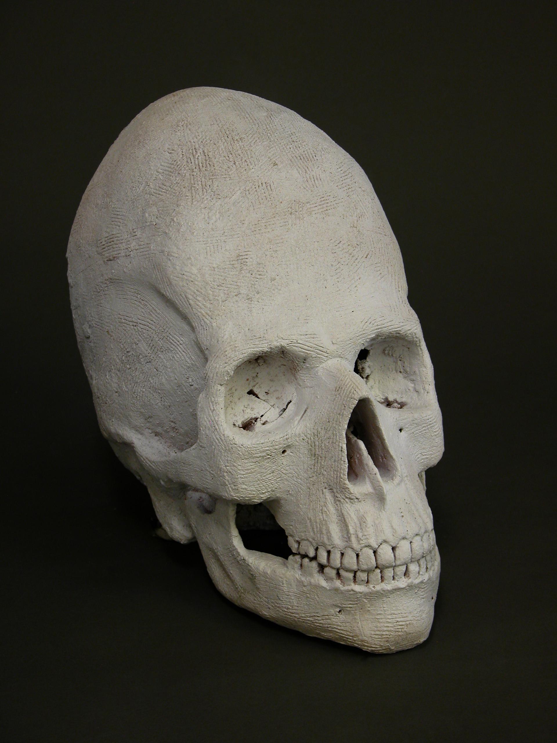1. Alien Skull Study
