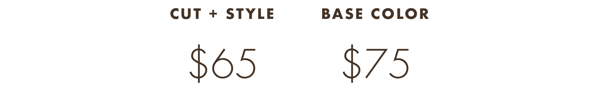 Stylist Pricing Web Insert 2.png