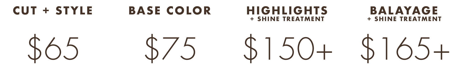 Stylist Pricing Web Insert.png