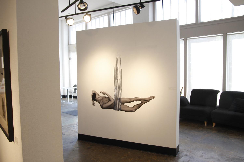 Installation Photo Credit: Anne Pallasen