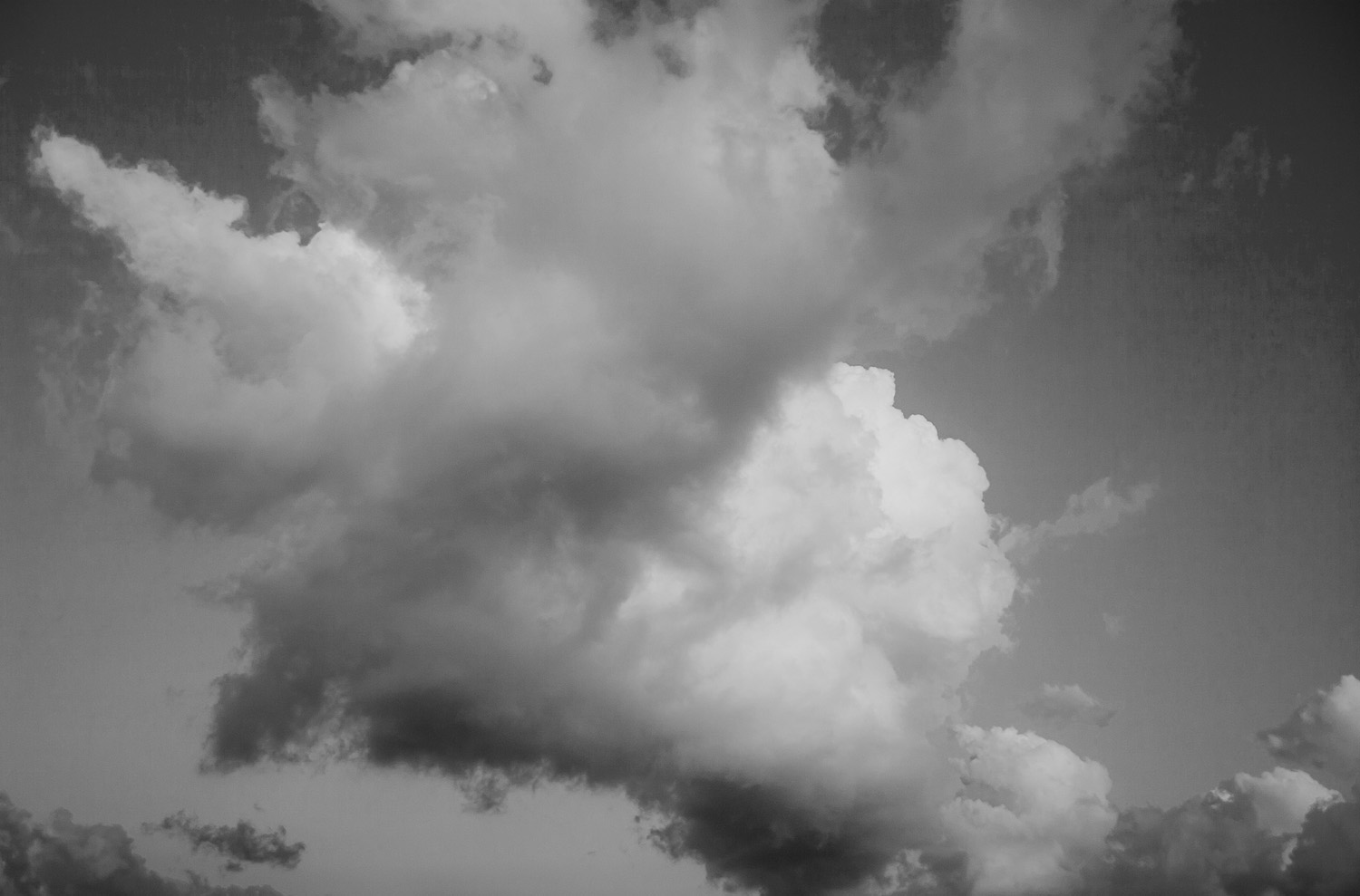"""Jeff Sessions' top selling photograph: """"Untitled (Freedom Clouds), 2017"""" *"""