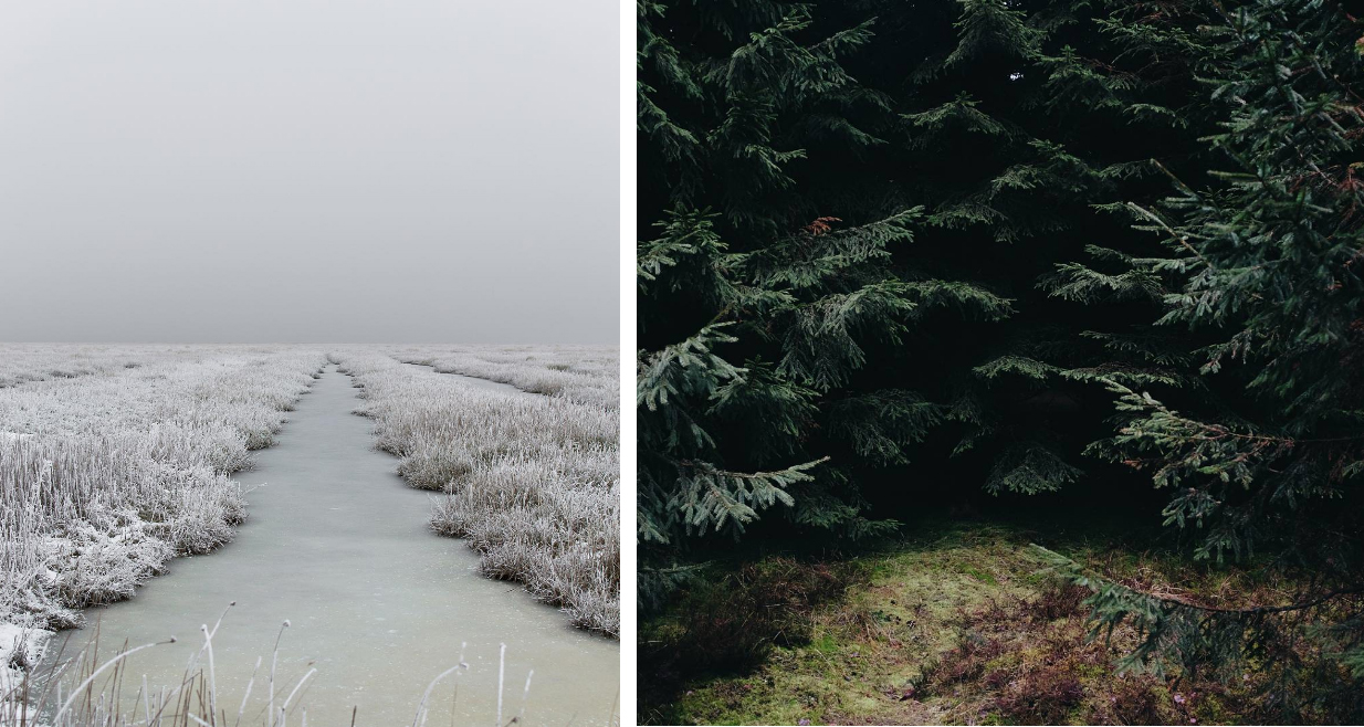 Photos © Henrik Hansen aka  @henrikemtkj