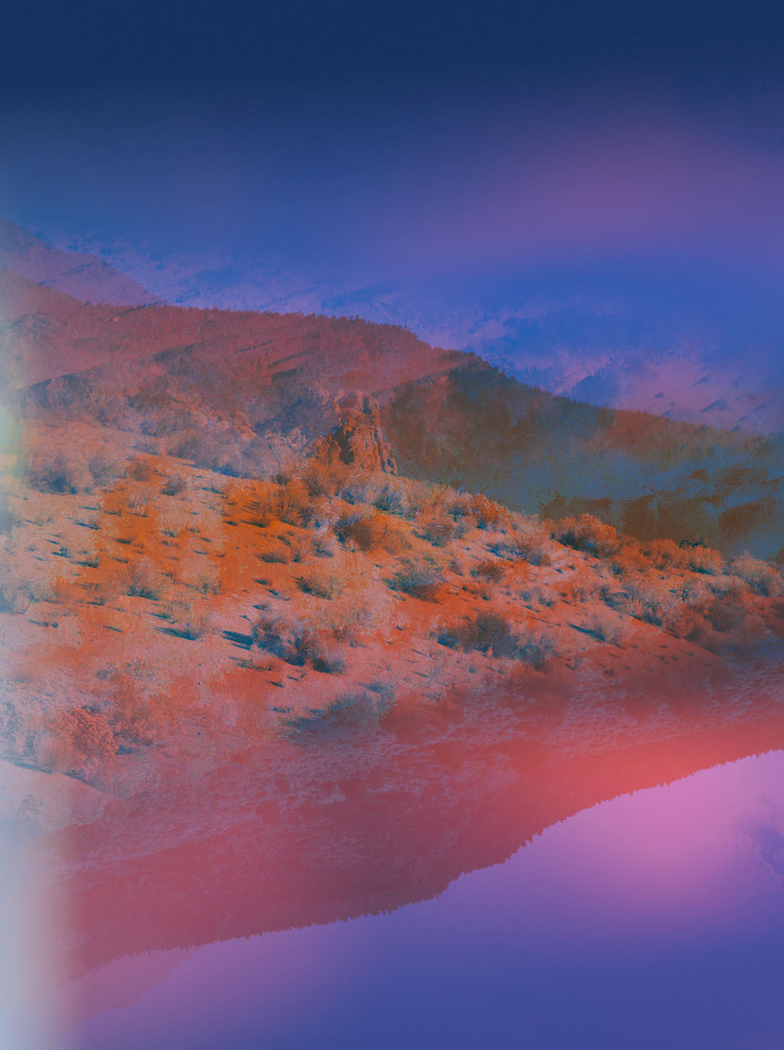Psychscape 78 (Obsidian Dome, CA), 2017 © Terri Loewenthal