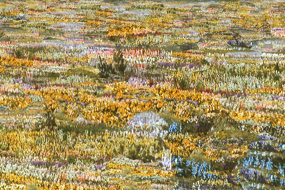 """Flower Field"" © Jane Christensen"