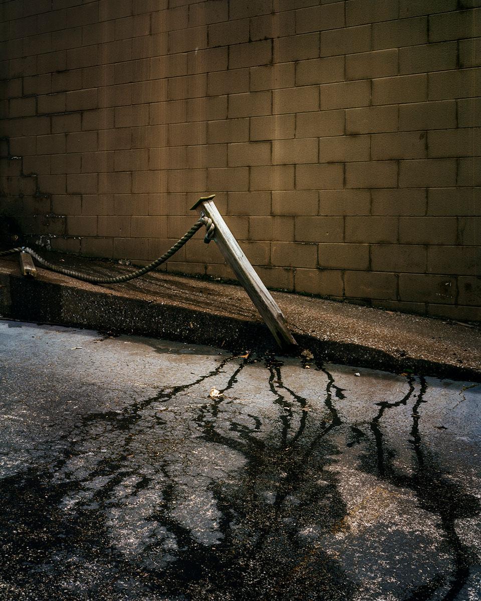 Broken Stake. © Shane Rocheleau