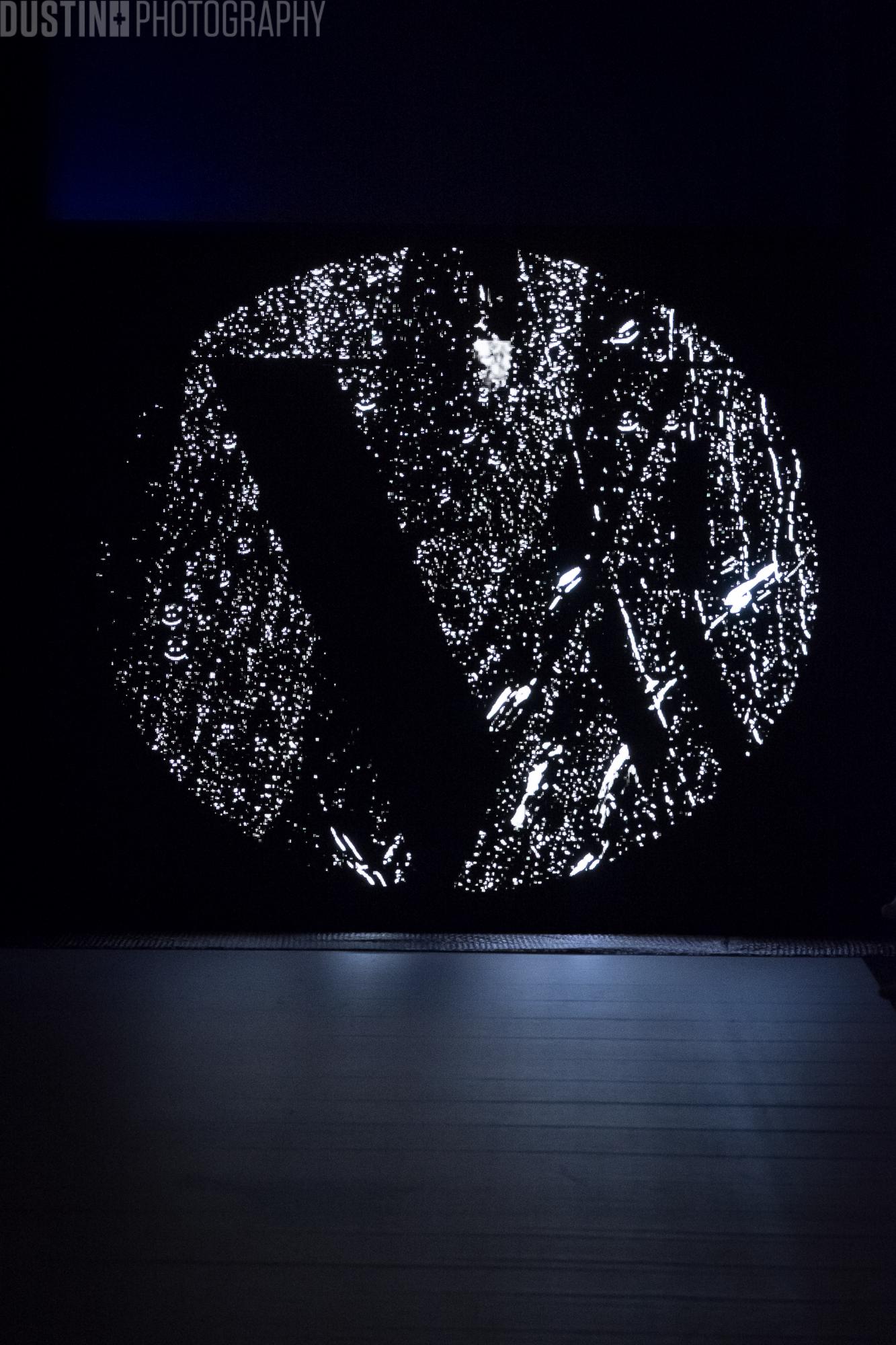 2017 3-25 VFWFW17 - logo-14478.jpg