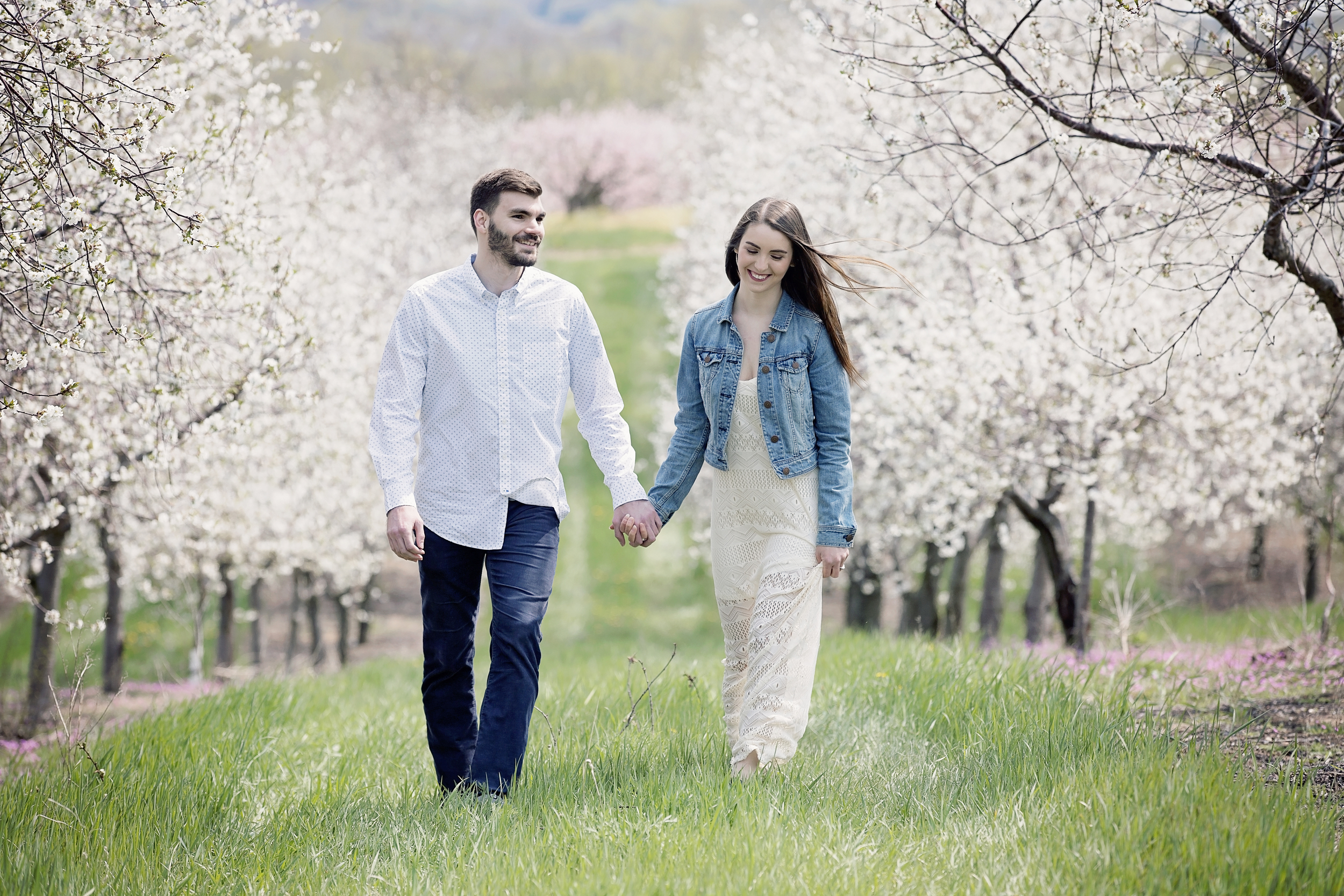 cherry orchard engagement