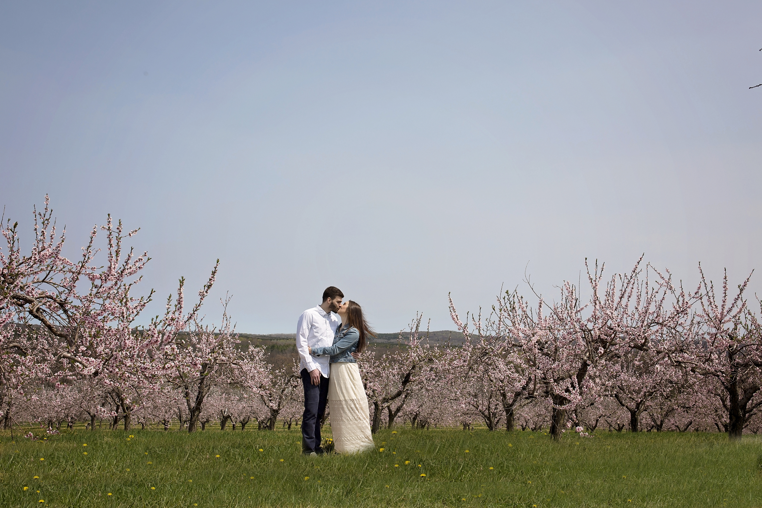 dramatic orchard bloom engagement