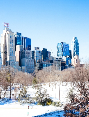 NYC-Central-Park-In-The-Snow-17.jpg