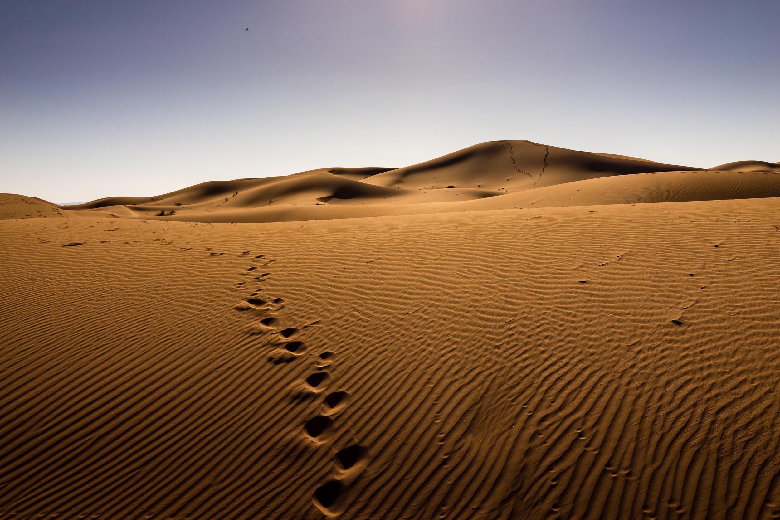 morocco by jb rasor-15.jpg