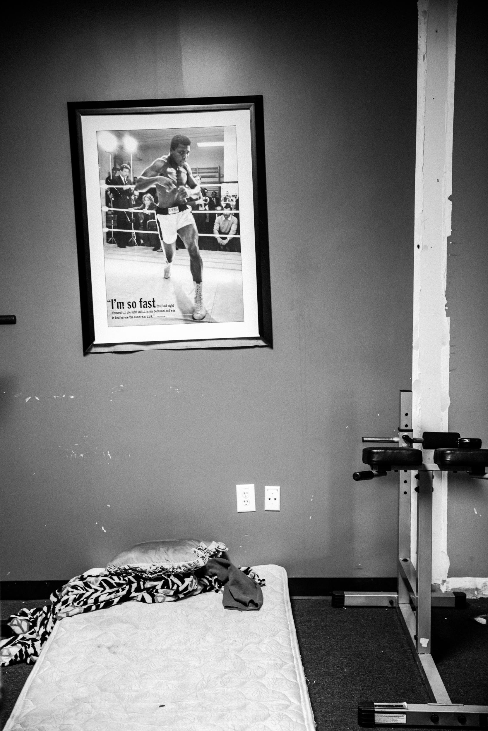 boxer cr-2.jpg