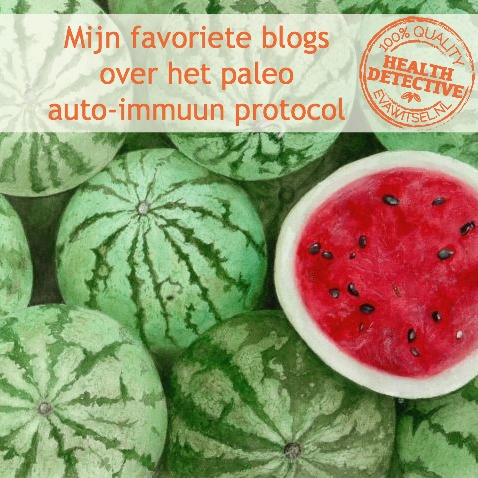 Favoriete paleo auto-immuun protocol blogs