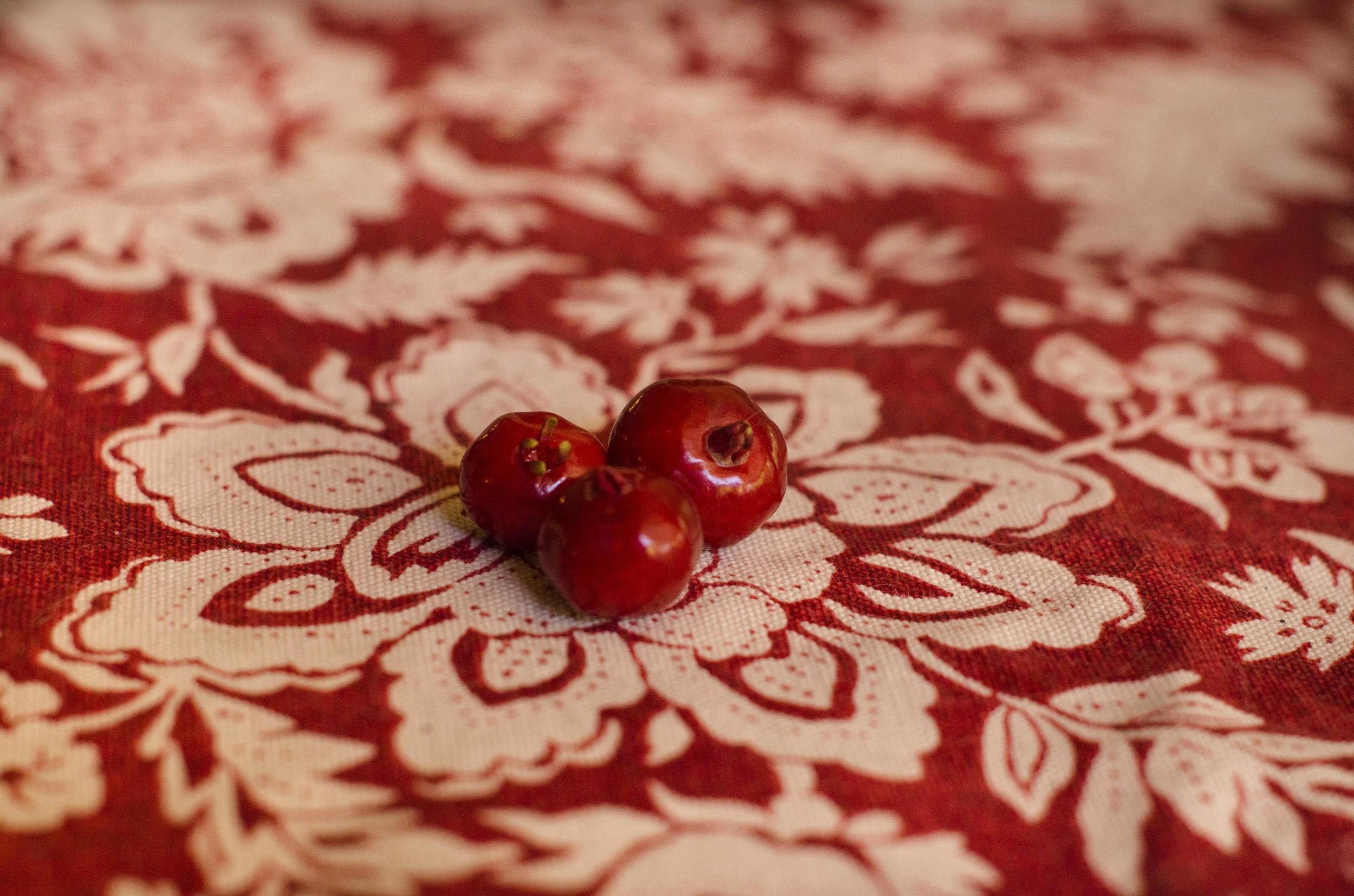 Pitango fruits -crimson love.