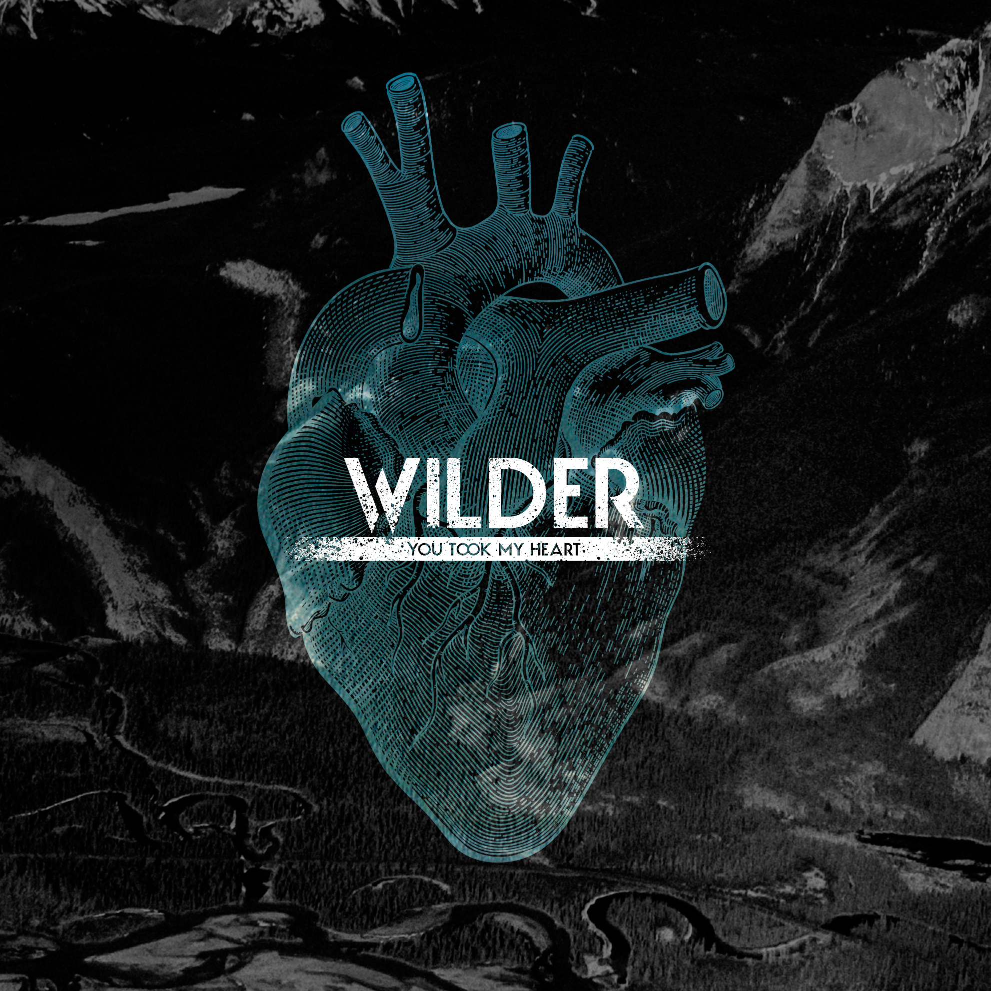 Wilder-you-took-my-heart-single-cover.jpg