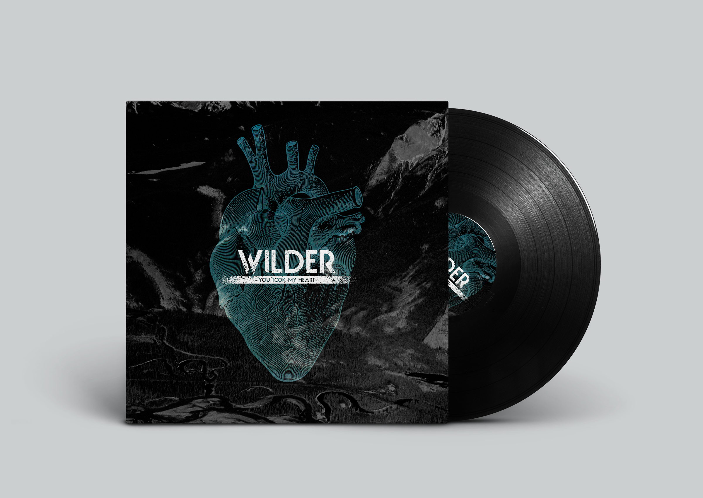 Wilder-You-took-my-heart-Vinyl-Record
