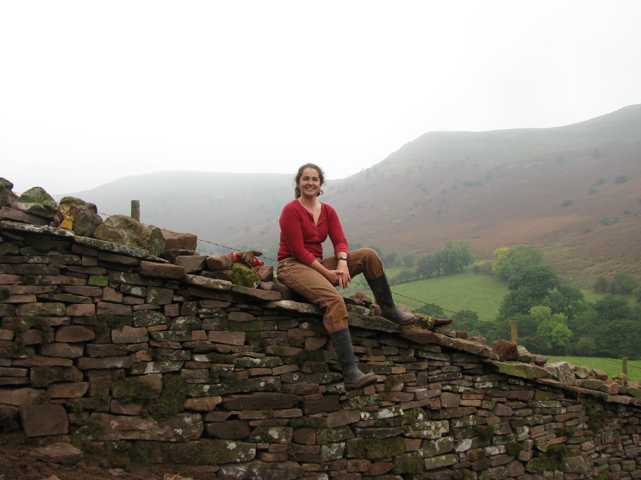Farm wall reconstruction
