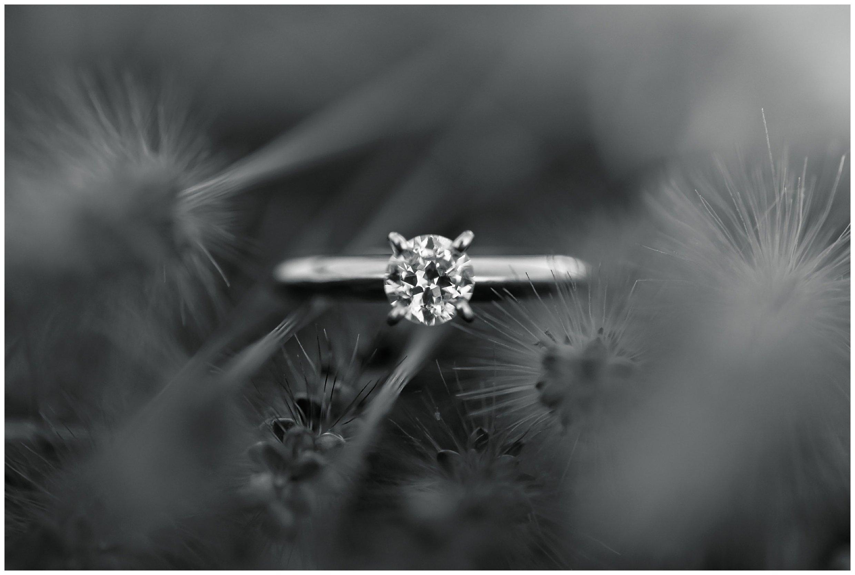 Stephanie Kopf Photography_Charleston SC Engagement Photographer-Wedding photographer-engaged-travel-themed-engagement-airplane-atlas-unique-178.jpg