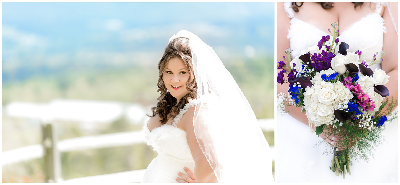 charleston south carolina wedding photographer eco friendly purple wedding colors luray virginia wedding mountains country22.jpg