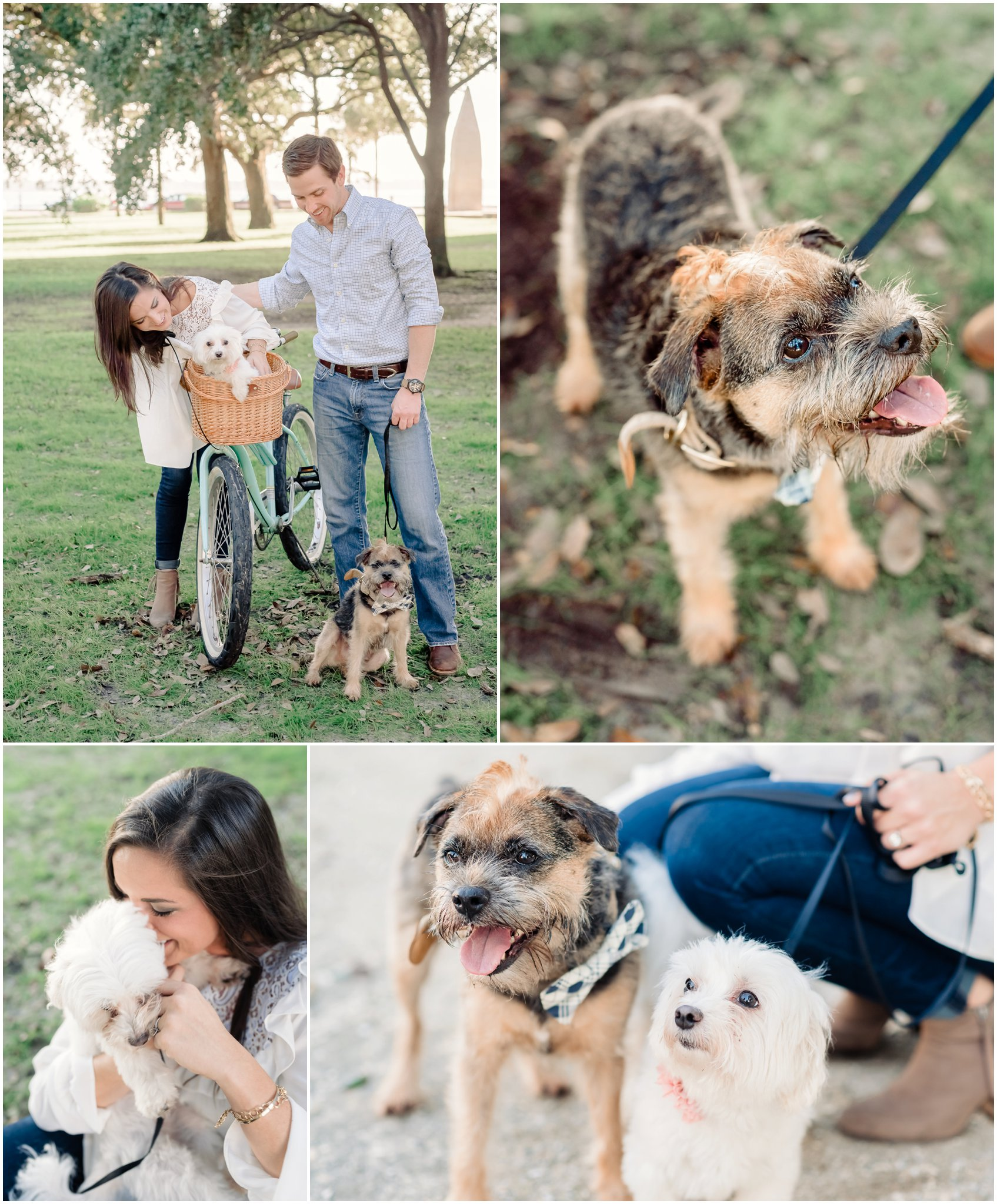 Engagement photos at White Point Garden, Laid back and sweet engagement photos with dogs and bicycle, Downtown Charleston SC Engagement Photographer