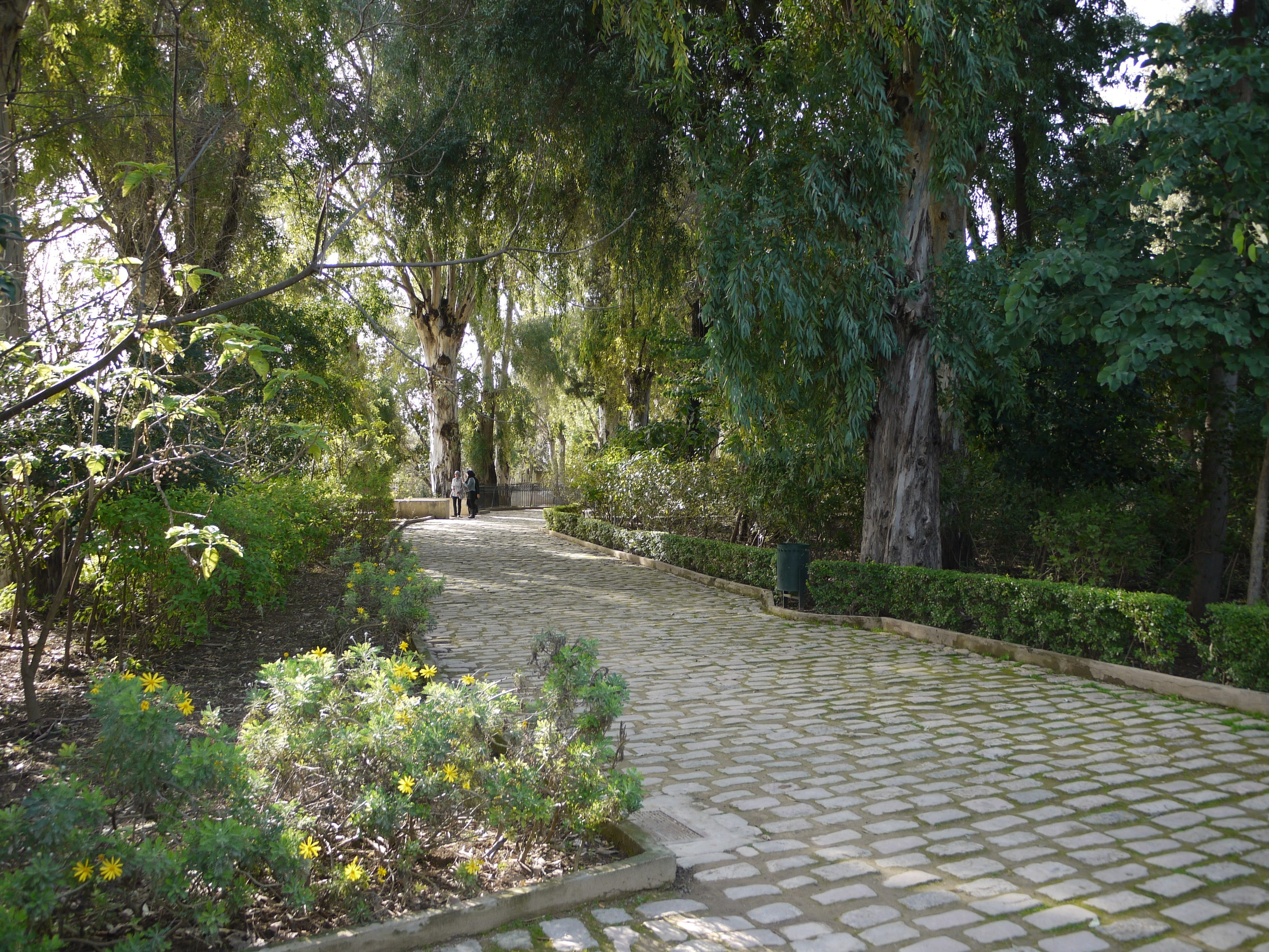 The public garden in Fez, an incredible oasis of green after the dense, packed passageways of the old medina.