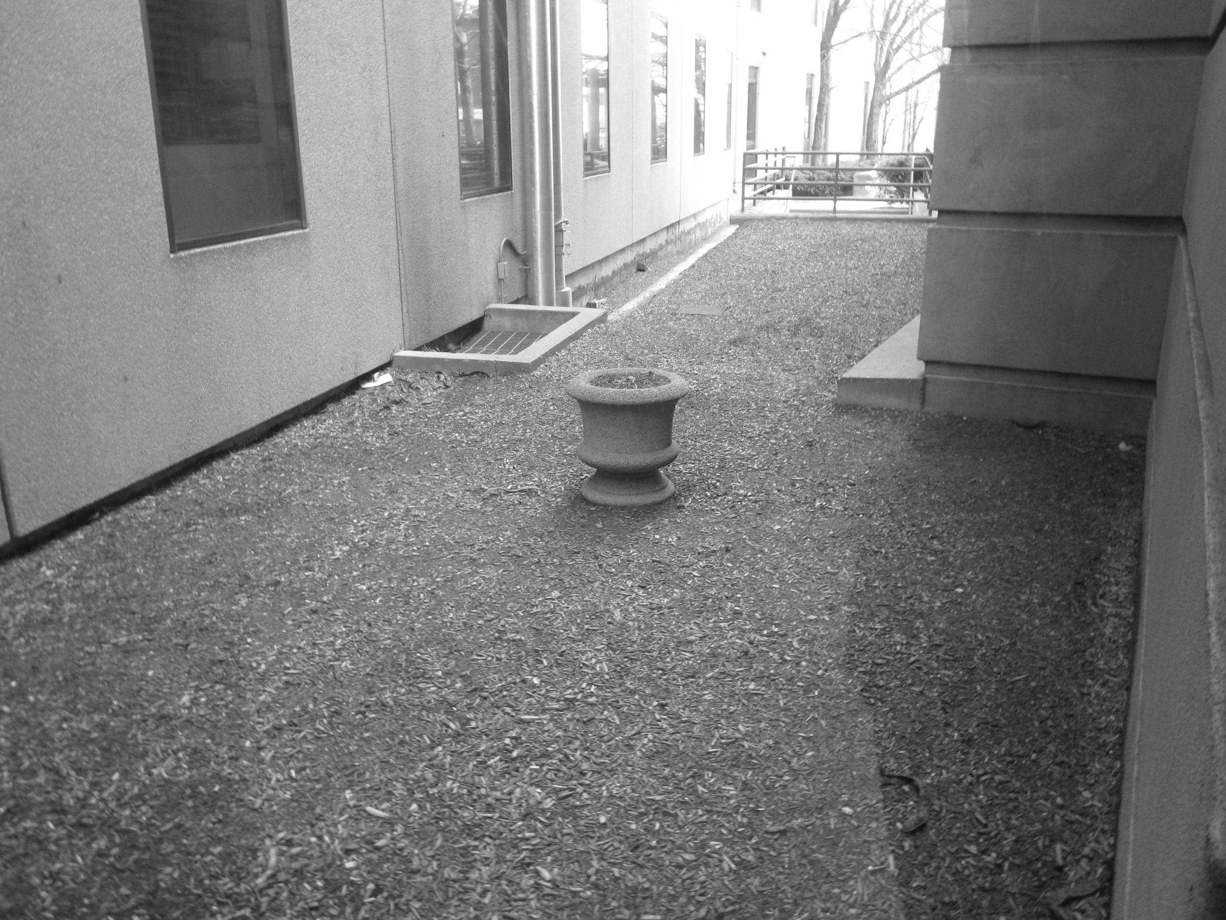 Interstitial garden before