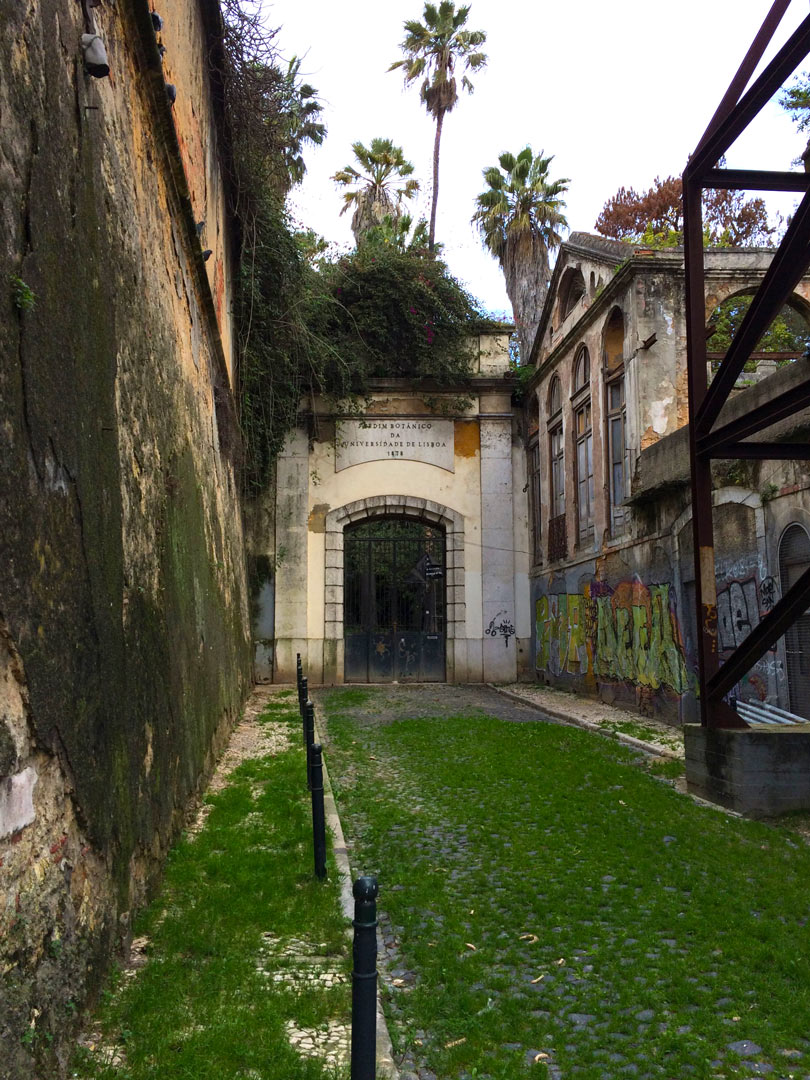 Lisbon's Botanical Garden was closed for renovation. SAD!