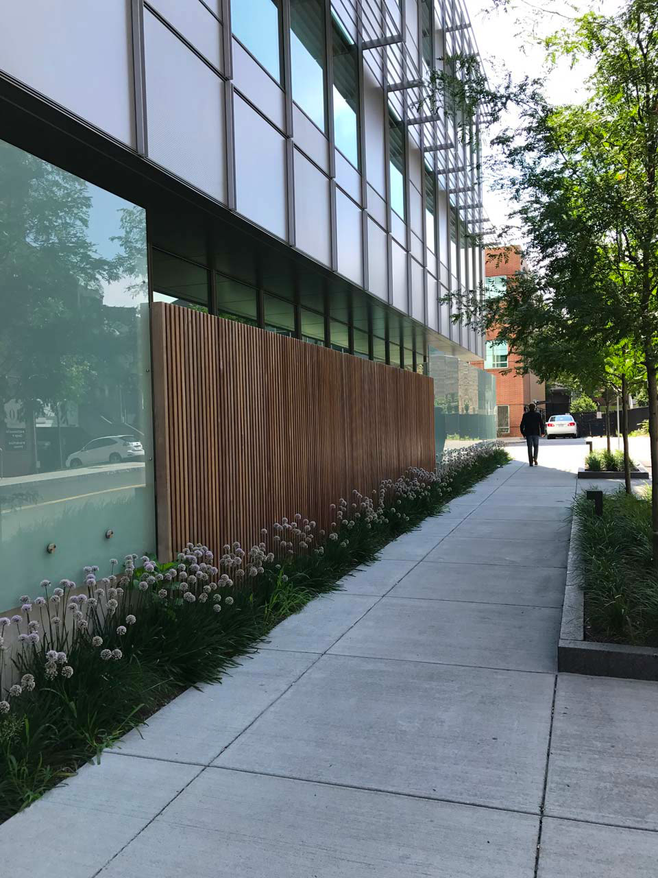 Brigham-and-Women's-Exterior-Planting1-KMDG.jpg