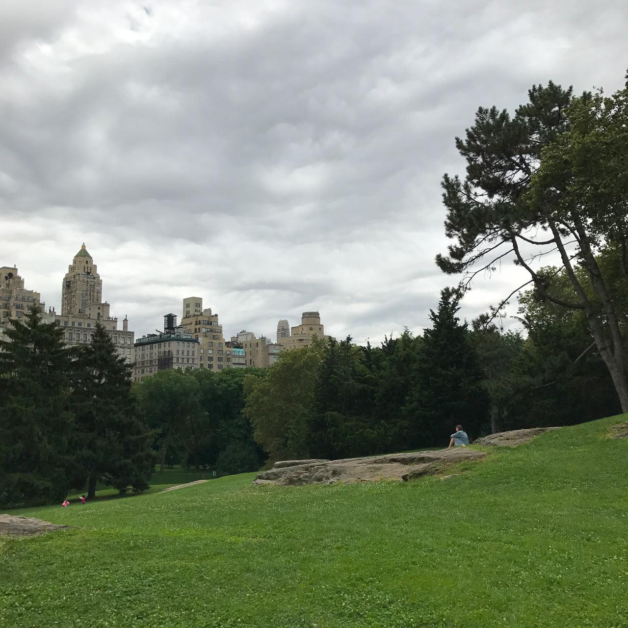 Central-Park-Olmsted-KMDG-NY-1.jpg