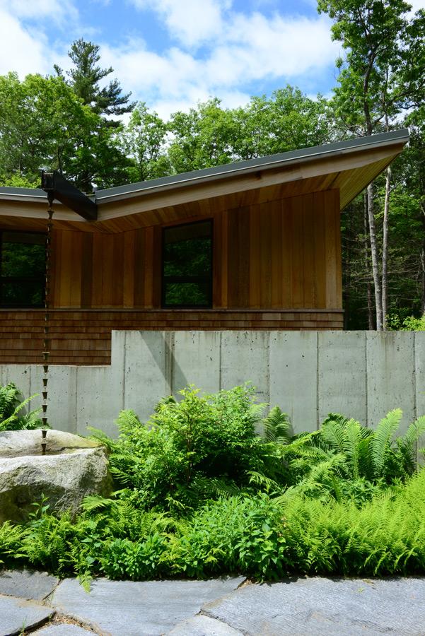 Summer-Star-Wildlife-Sanctuary_KMDG_native-rain-garden_DKM_7749.jpg