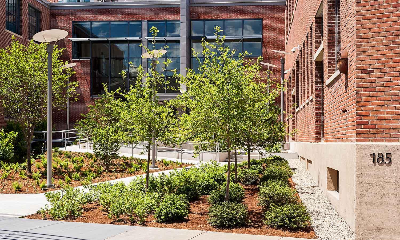 MIT-NW23_campus-landscape_courtyard_Klopfer-Martin_3.jpg