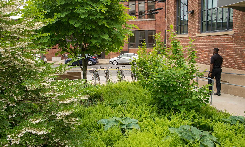 MIT-NW23_campus-landscape_courtyard_Klopfer-Martin_7.jpg