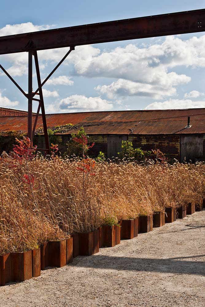 Steel-Yard_reclaimed-steel-pile_native-landscape-urban-wild_Klopfer-Martin.jpg