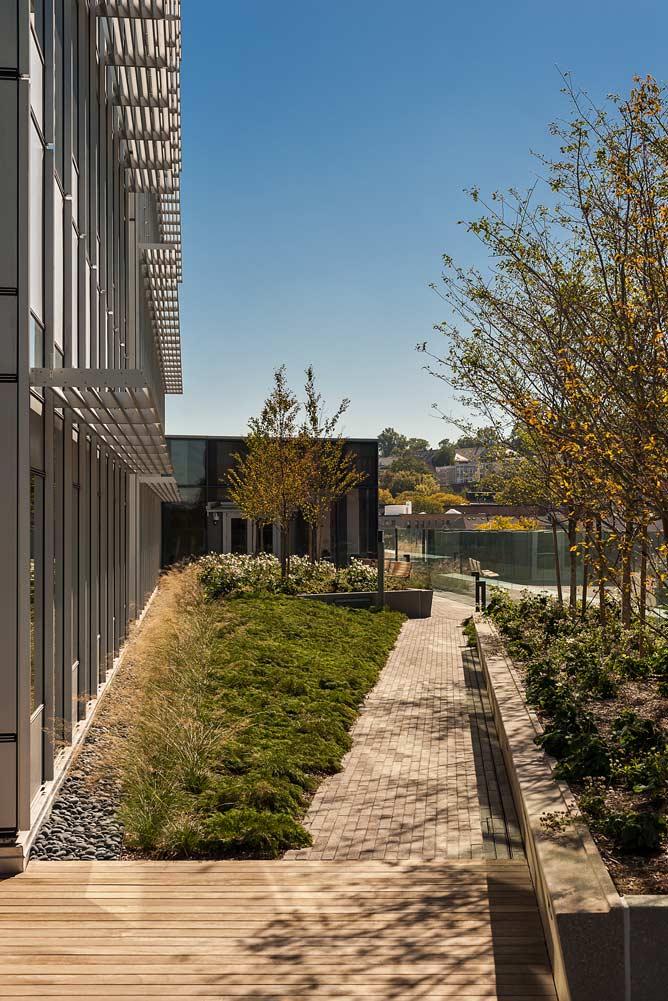 Building-Transformative-Medicine_hospital-rooftop-landscape-garden_Klopfer-Martin.jpg
