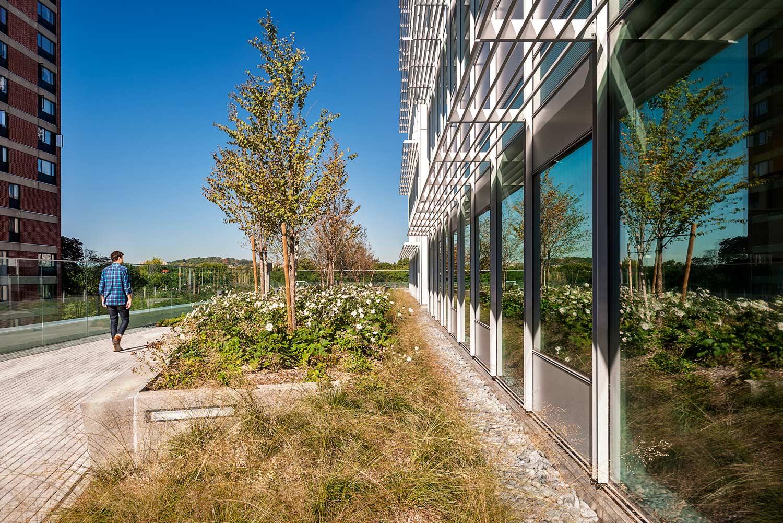 BWH-Building-Transformative-Medicine_hospital-rooftop-landscape-garden_Klopfer-Martin.jpg