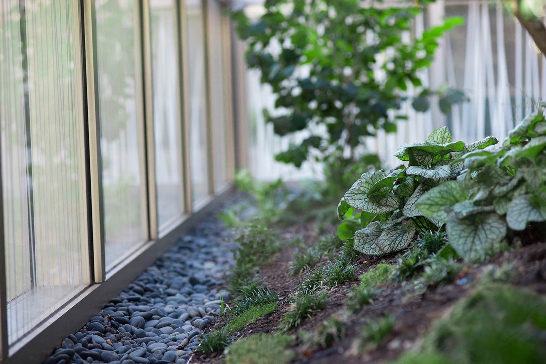BWH-Garden-Cafe_Terrarium-Planting-Detail_Landscape_Klopfer-Martin.jpg