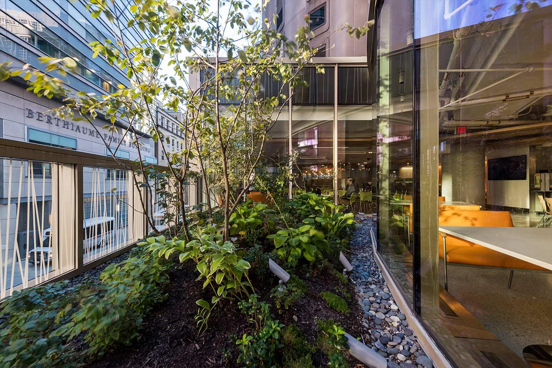 BWH-Garden-Cafe_Terrarium-Planting_Landscape-Architecture_Klopfer-Martin.jpg
