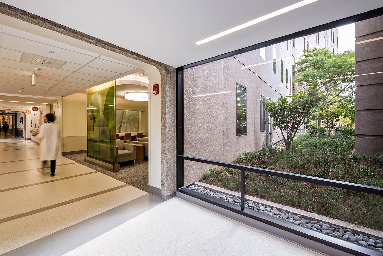 BWH_interior-view-interstitial-landscape-hospital-campus_Klopfer-Martin.jpg
