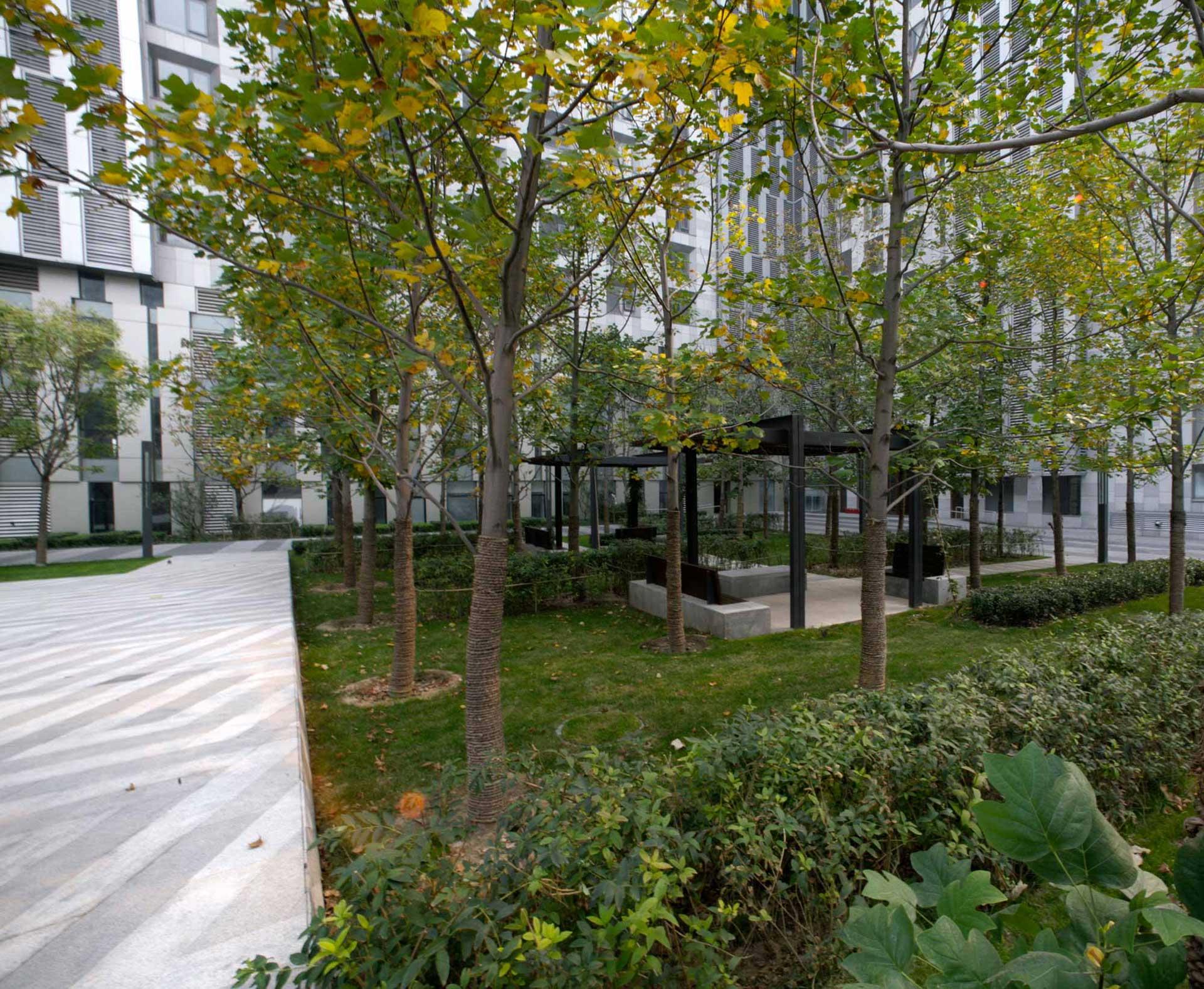 Park-Five_Klopfer-Martin-Design-Group_Beijing_planting_pavillion.jpg