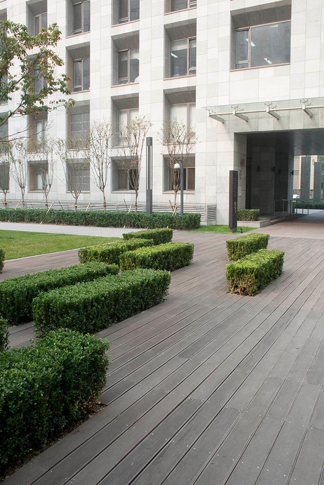 Park-Five-Condominiums-Beijing_courtyard-planting_Klopfer-Martin.jpg