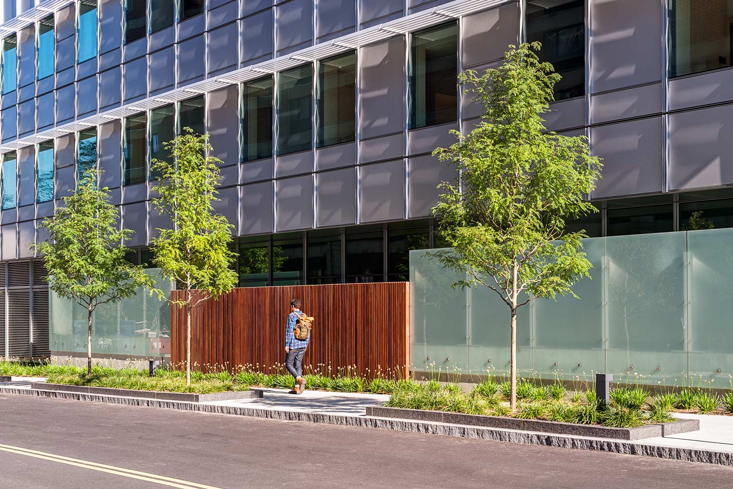 BWH-Building-Transformative-Medicine_streetscape-wood-glass-screen-wall_Klopfer-Martin.jpg