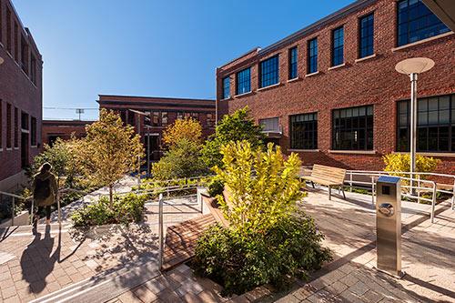 MIT NW23 Courtyard  Cambridge, MA