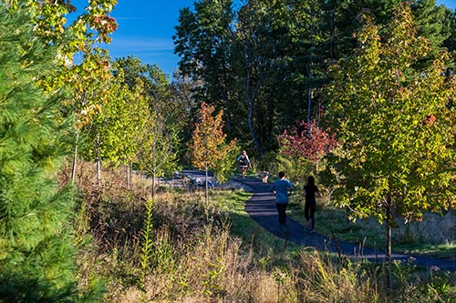 Fisher-Hill-Reservoir-Park_ADA-accessibility-woodland-path_Klopfer-Martin.jpg