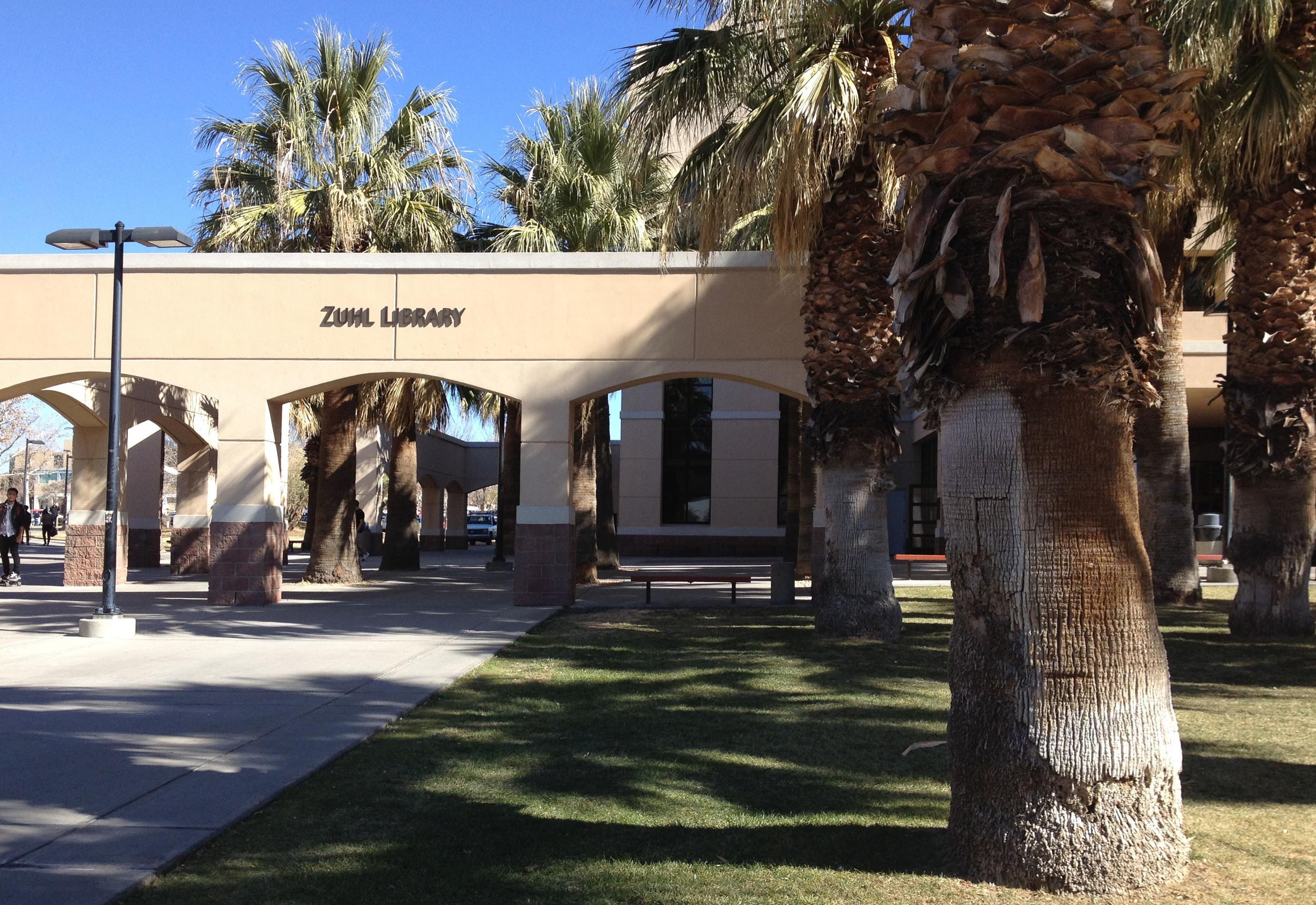Palms provide shade along entry path