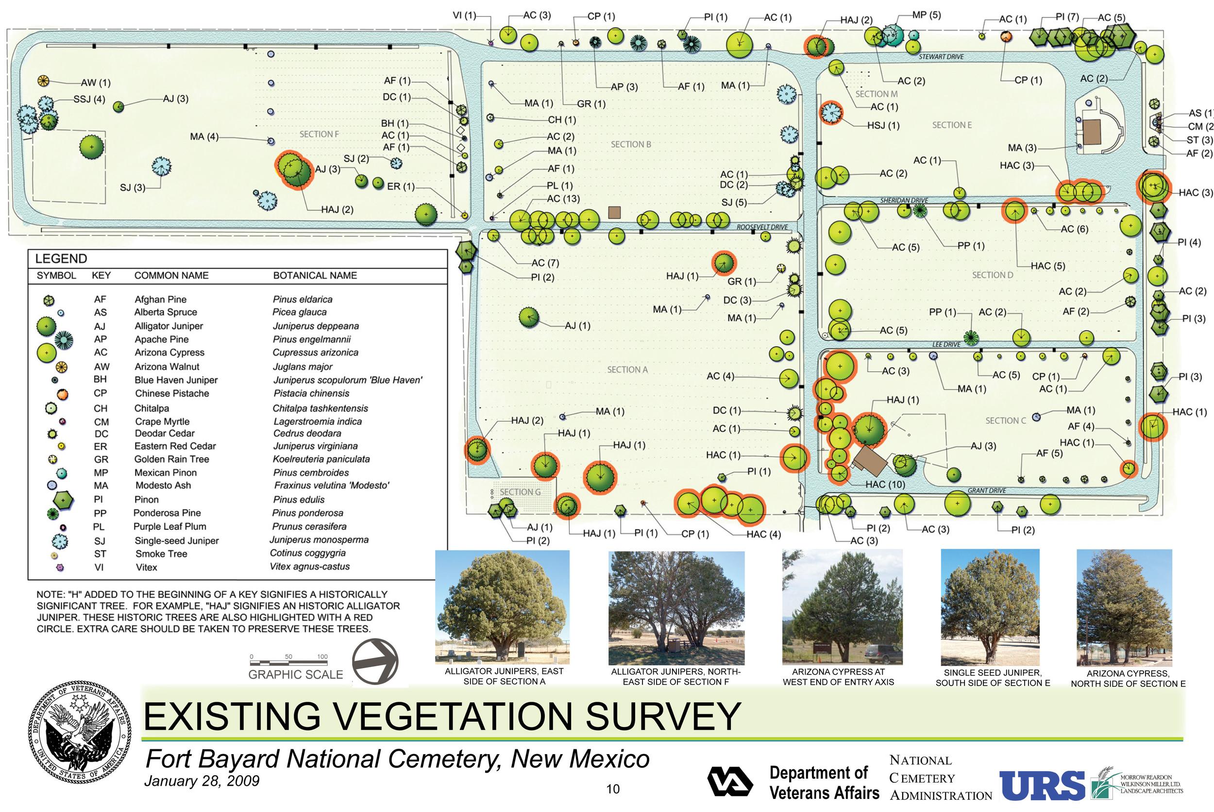 Fort Bayard National Cemetery Existing Vegetation Survey