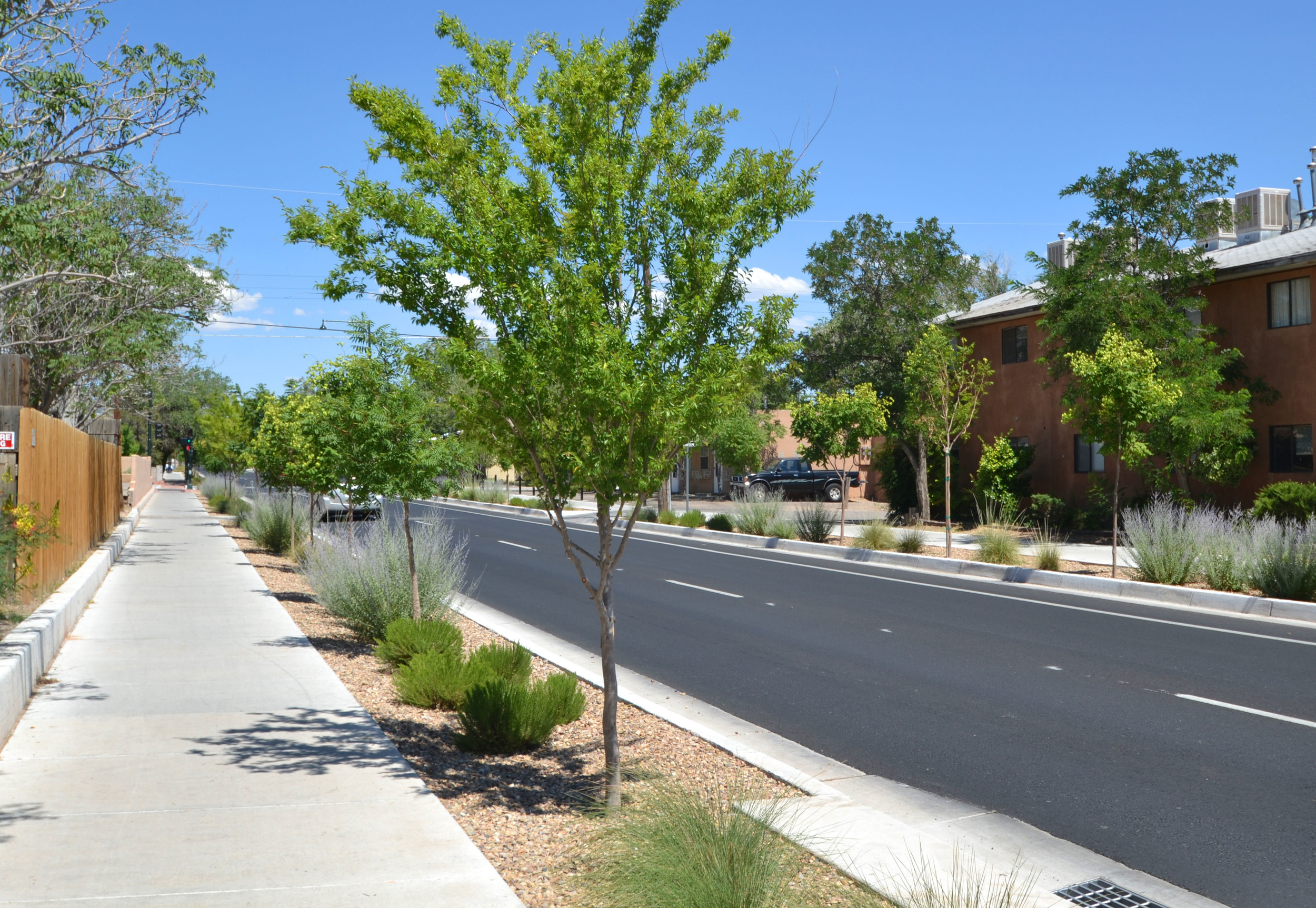 New trees planted to provide shade and traffic calming