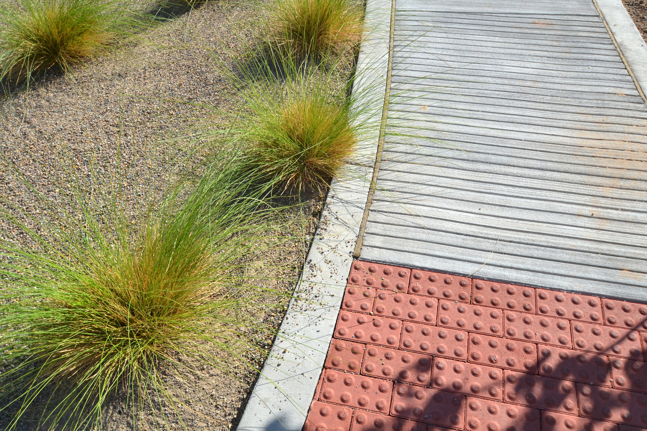 Various textures and colors on the rehabilitation walkway challenge clients to improve walking abilities
